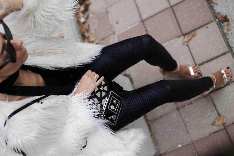 Chanel Camera Bag 04